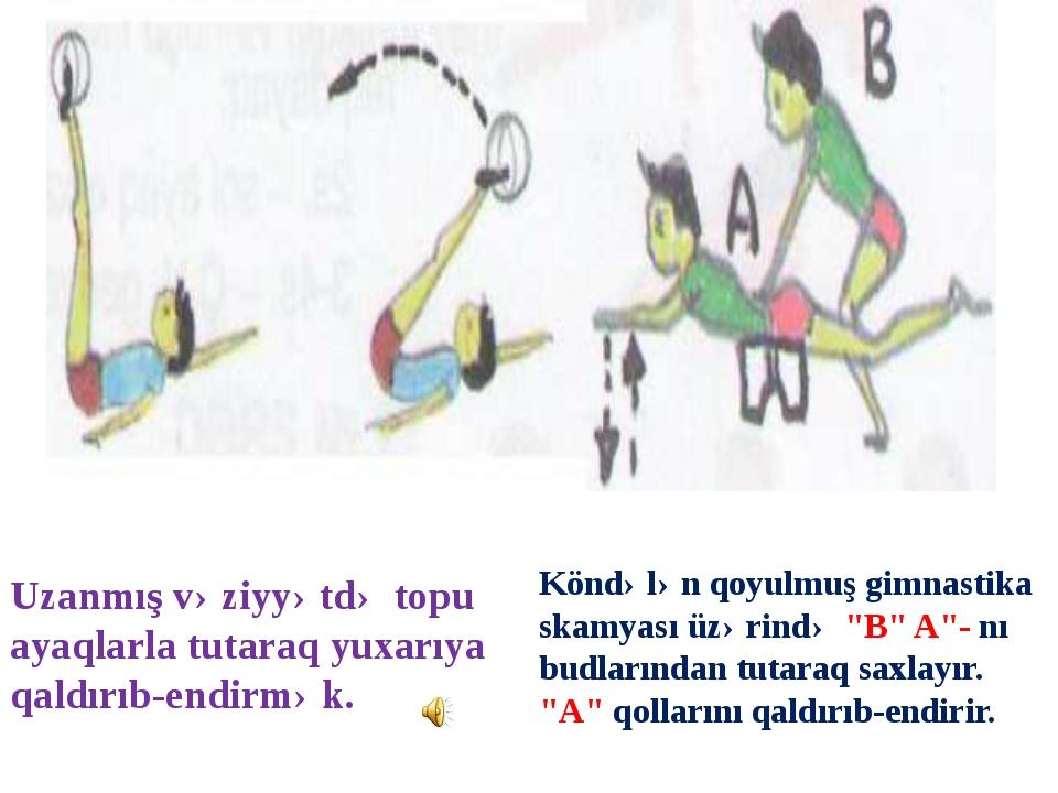 """Köndələn qoyulmuş gimnastika skamyası üzərində """"B"""" A""""- nı budlarından tutaraq..."""