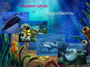 Водная среда Гидробионты
