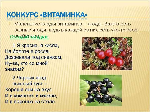 Маленькие клады витаминов – ягоды. Важно есть разные ягоды, ведь в каждой из...