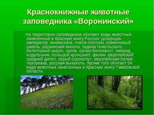 Краснокнижные животные заповедника «Воронинский» На территории заповедника об