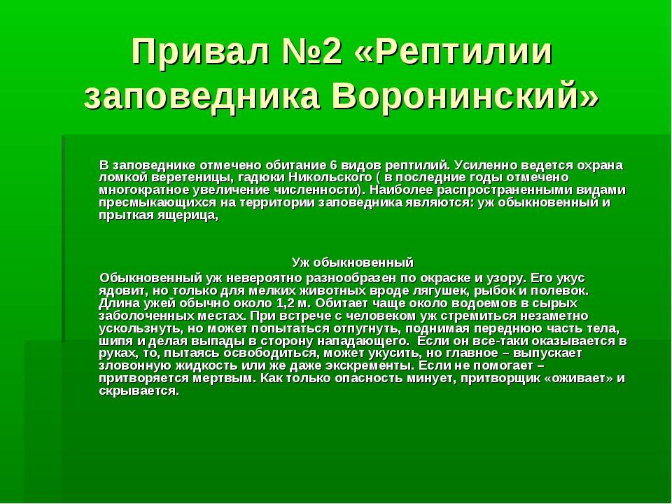 Привал №2 «Рептилии заповедника Воронинский» В заповеднике отмечено обитание...
