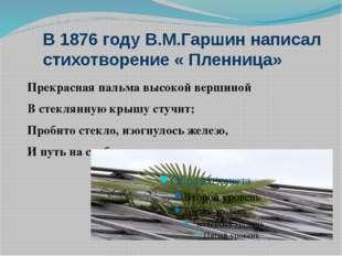 В 1876 году В.М.Гаршин написал стихотворение « Пленница» Прекрасная пальма вы