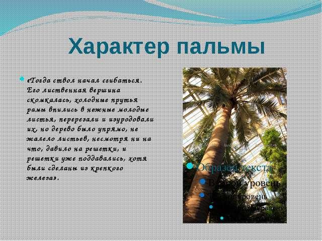 Характер пальмы «Тогда ствол начал сгибаться. Его лиственная вершина скомкала...