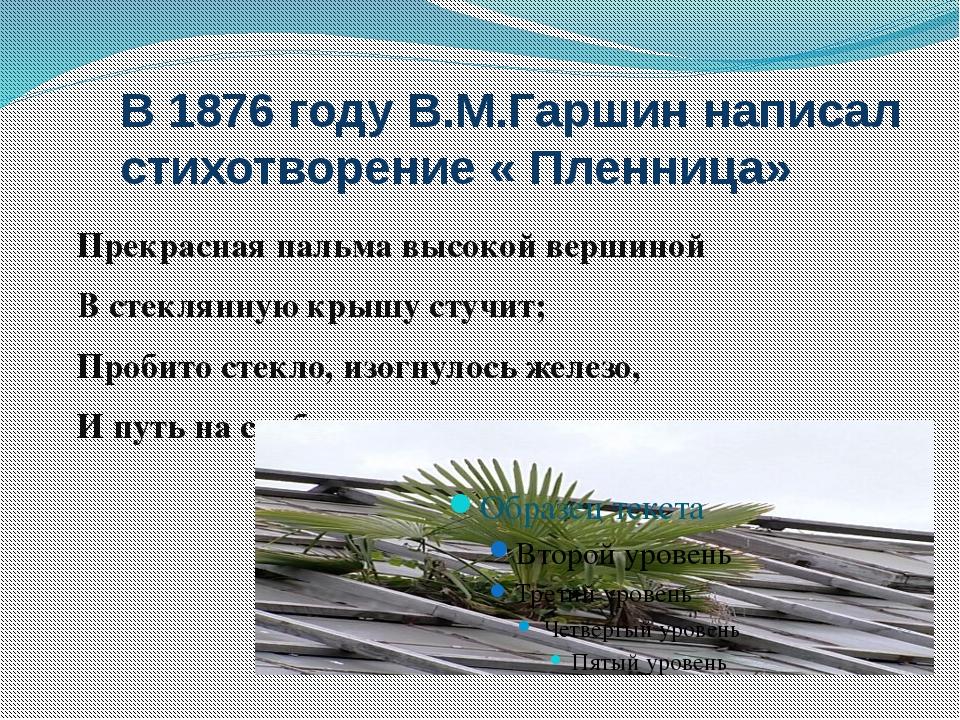 В 1876 году В.М.Гаршин написал стихотворение « Пленница» Прекрасная пальма вы...