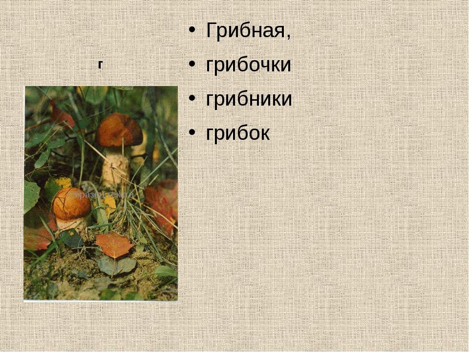 г Грибная, грибочки грибники грибок