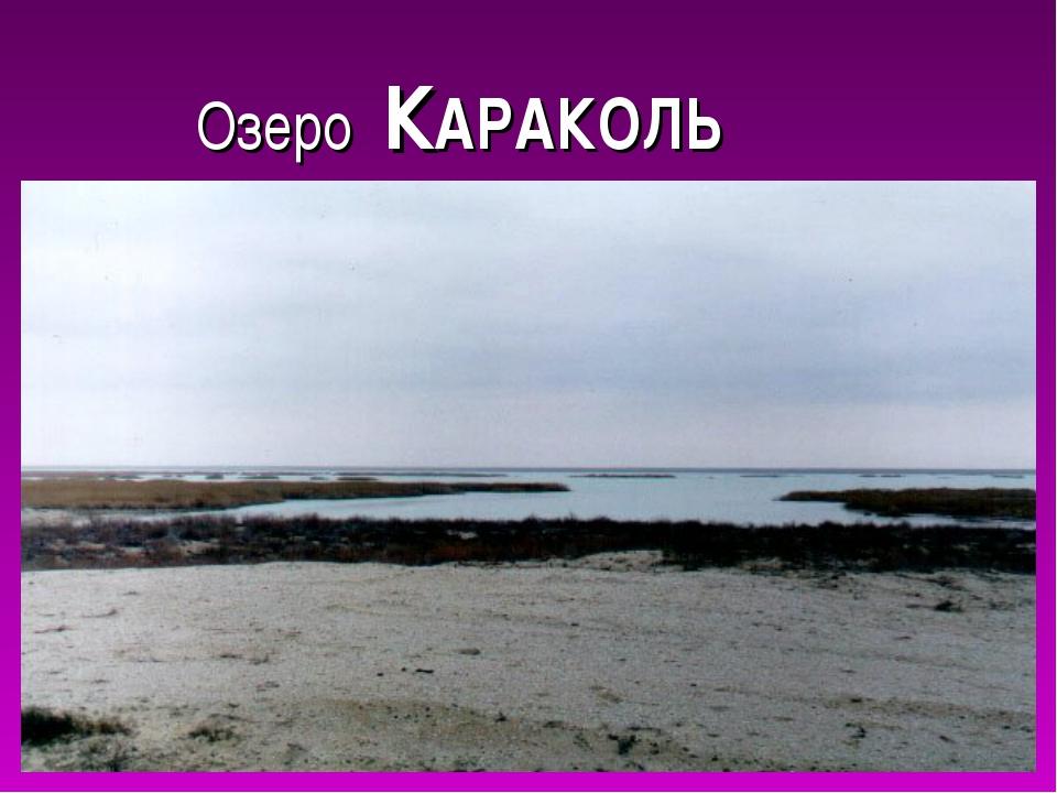 Озеро КАРАКОЛЬ