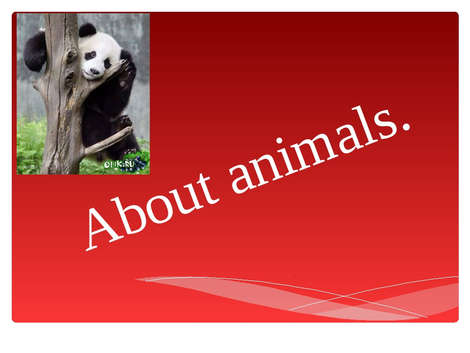About animals.