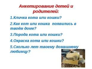 Анкетирование детей и родителей: 1.Кличка кота или кошки? 2.Как кот или кошка