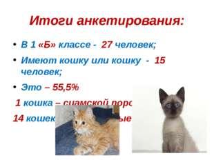 Итоги анкетирования: В 1 «Б» классе - 27 человек; Имеют кошку или кошку - 15