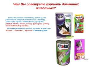 Чем Вы советуете кормить домашних животных? Если нет никаких патологий у пито