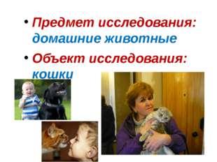 Предмет исследования: домашние животные Объект исследования: кошки