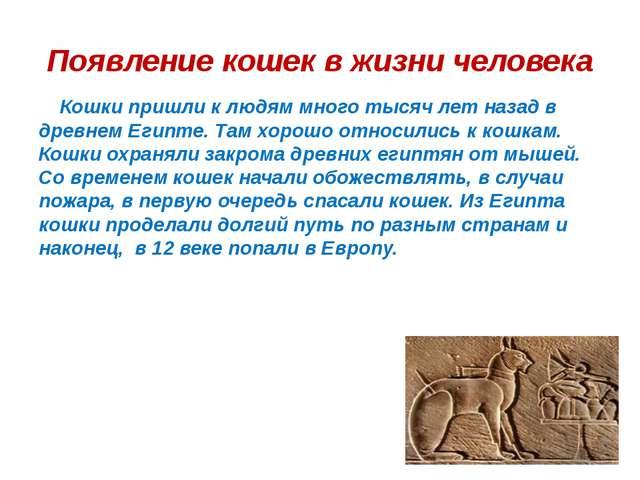 Появление кошек в жизни человека Кошки пришли к людям много тысяч лет назад в...