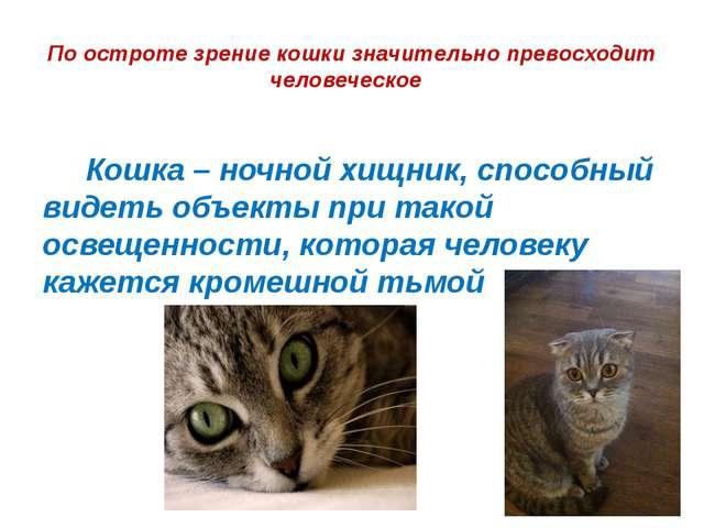 По остроте зрение кошки значительно превосходит человеческое  Кошка – ночно...