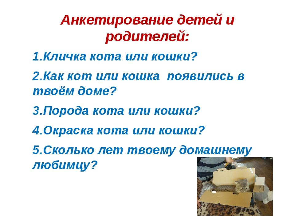 Анкетирование детей и родителей: 1.Кличка кота или кошки? 2.Как кот или кошка...