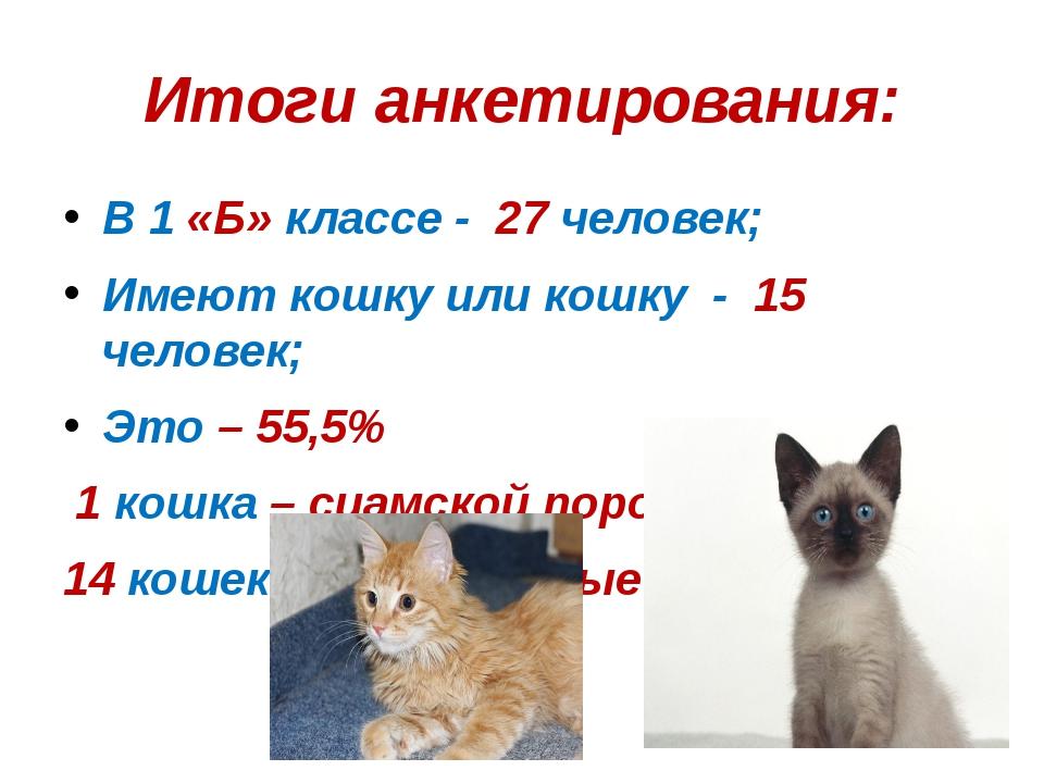 Итоги анкетирования: В 1 «Б» классе - 27 человек; Имеют кошку или кошку - 15...