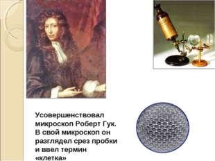 Усовершенствовал микроскоп Роберт Гук. В свой микроскоп он разглядел срез про