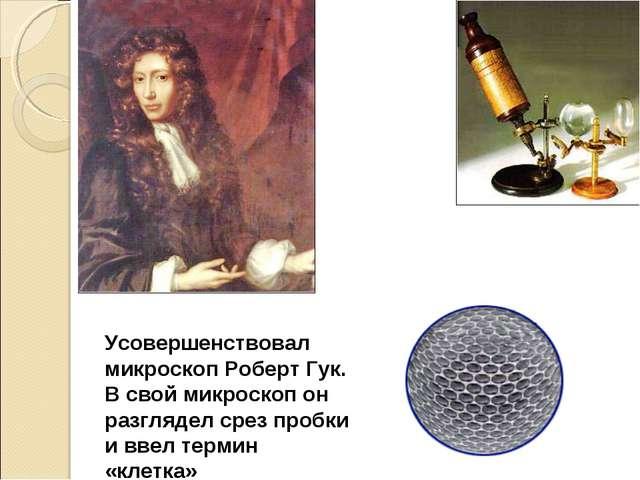 Усовершенствовал микроскоп Роберт Гук. В свой микроскоп он разглядел срез про...