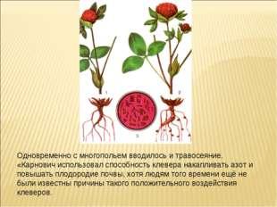 Одновременно с многопольем вводилось и травосеяние. «Карнович использовал спо
