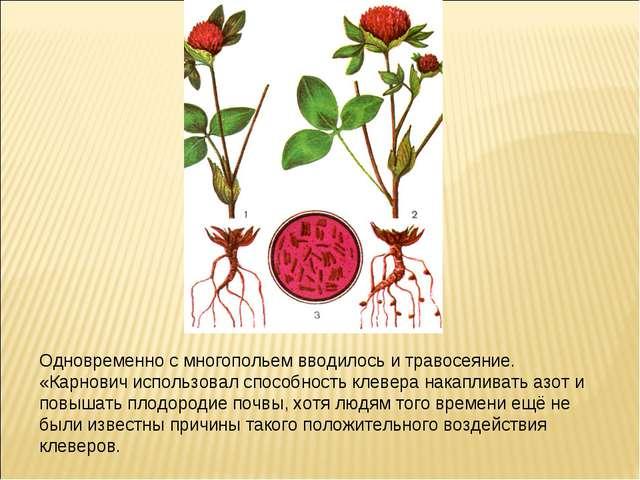 Одновременно с многопольем вводилось и травосеяние. «Карнович использовал спо...
