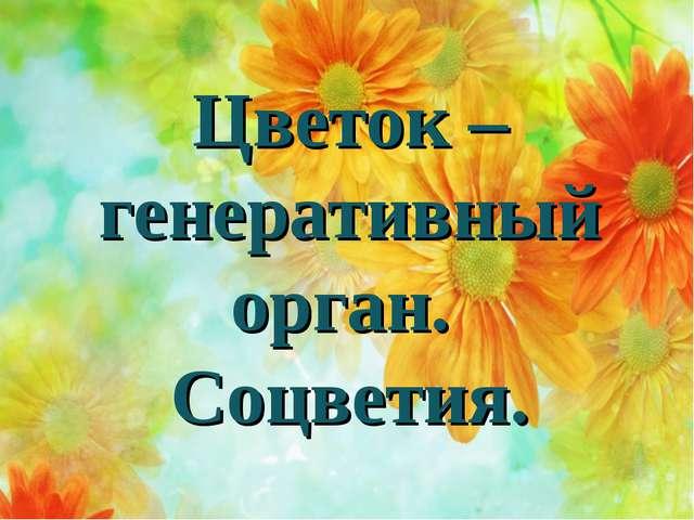 Цветок – генеративный орган. Соцветия.