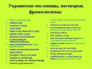 Украинские пословицы, поговорки, фразеологизмы буря у склянці води варити вод