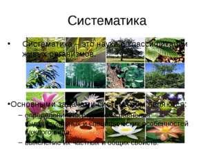 Систематика Систематика – это наука о классификации живых организмов. Основны