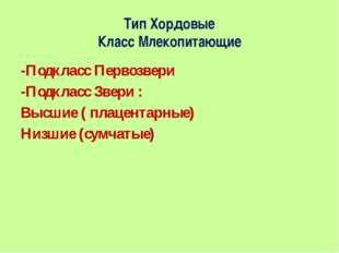 Тип Хордовые Класс Млекопитающие -Подкласс Первозвери -Подкласс Звери : Высши