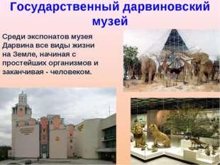 Государственный дарвиновский музей Среди экспонатов музея Дарвина все виды жи