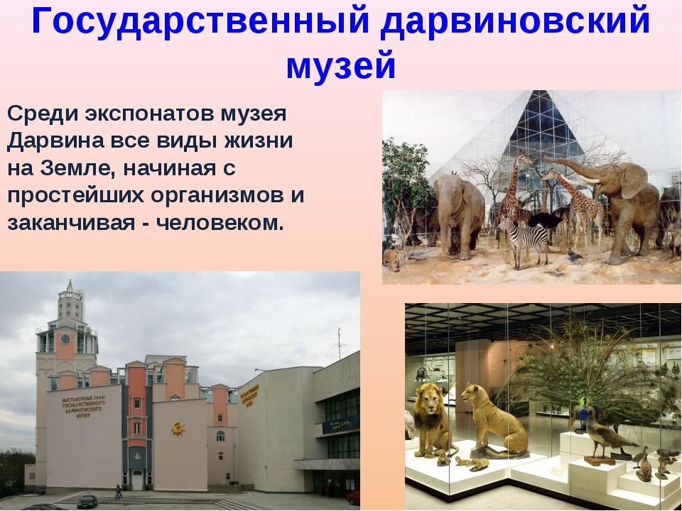 Государственный дарвиновский музей Среди экспонатов музея Дарвина все виды жи...