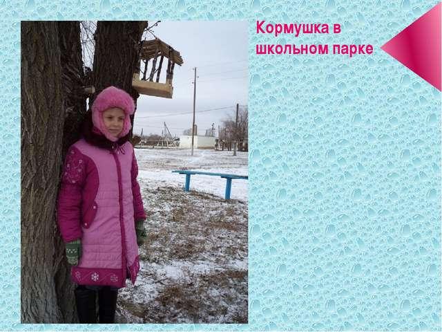 Кормушка в школьном парке