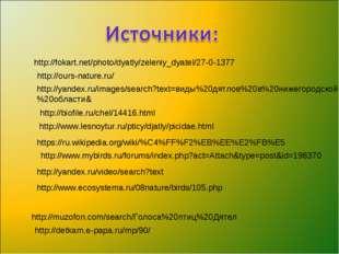 http://fokart.net/photo/dyatly/zeleniy_dyatel/27-0-1377 http://yandex.ru/imag