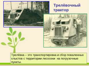 Трелёвочный трактор Трелёвка – это транспортировка и сбор поваленных хлыстов