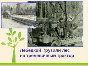 Лебёдкой грузили лес на трелёвочный трактор