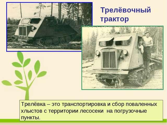 Трелёвочный трактор Трелёвка – это транспортировка и сбор поваленных хлыстов...