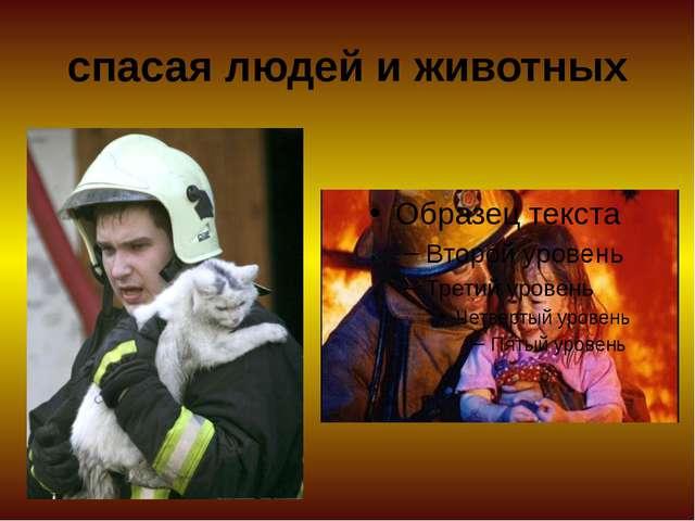 спасая людей и животных