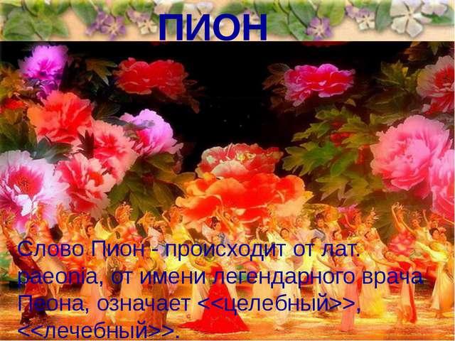 ПИОН Слово Пион - происходит от лат. раеoniа, от имени легендарного врача Пео...