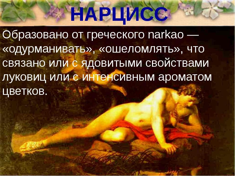 НАРЦИСС Образовано от греческого narkao — «одурманивать», «ошеломлять», что с...