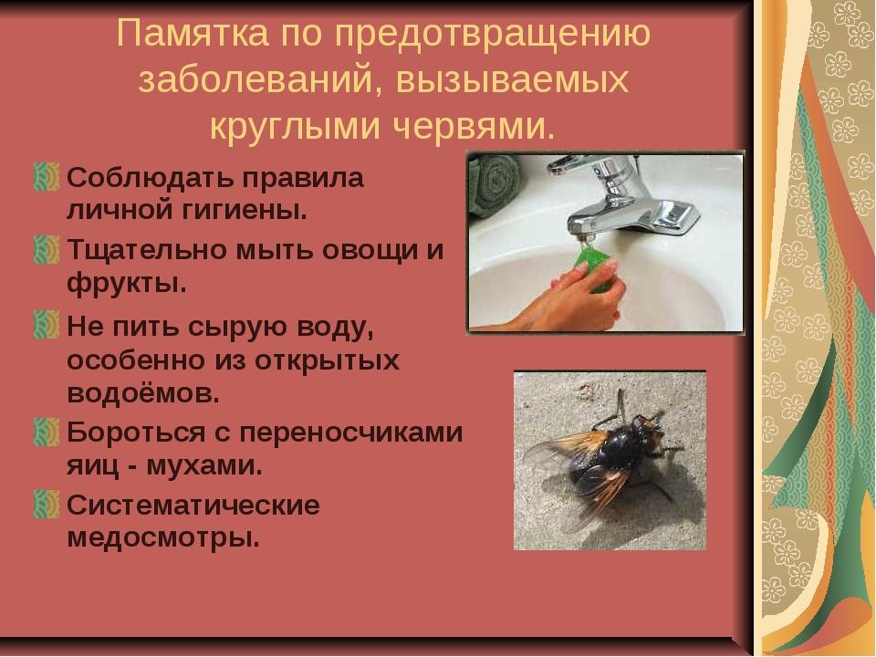 Памятка по предотвращению заболеваний, вызываемых круглыми червями. Соблюдать...