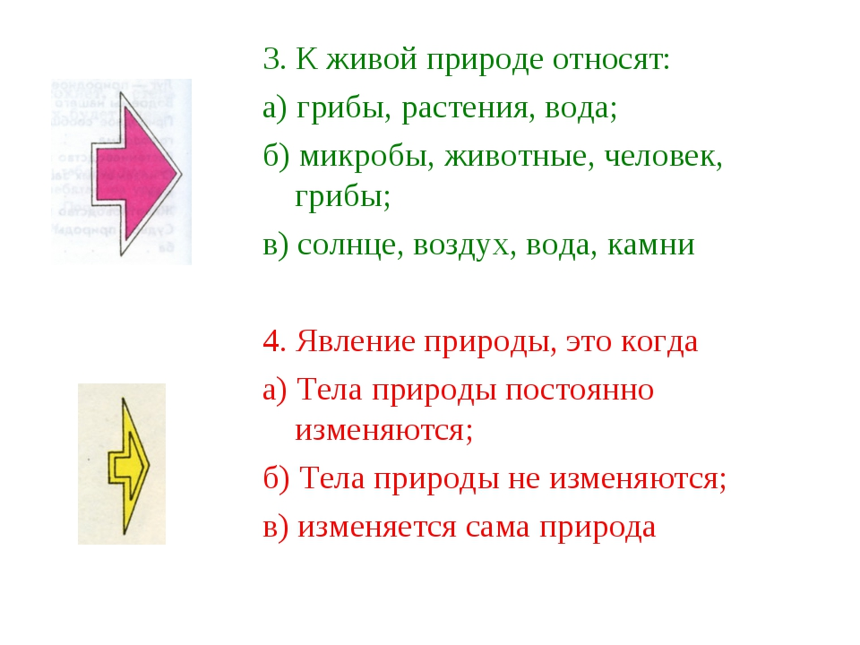 3. К живой природе относят: а) грибы, растения, вода; б) микробы, животные, ч...