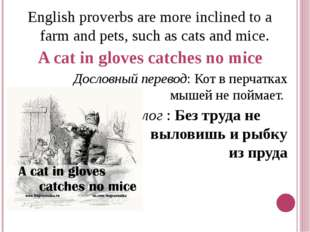 English proverbs are more inclined to a farm and pets, such as cats and mice.