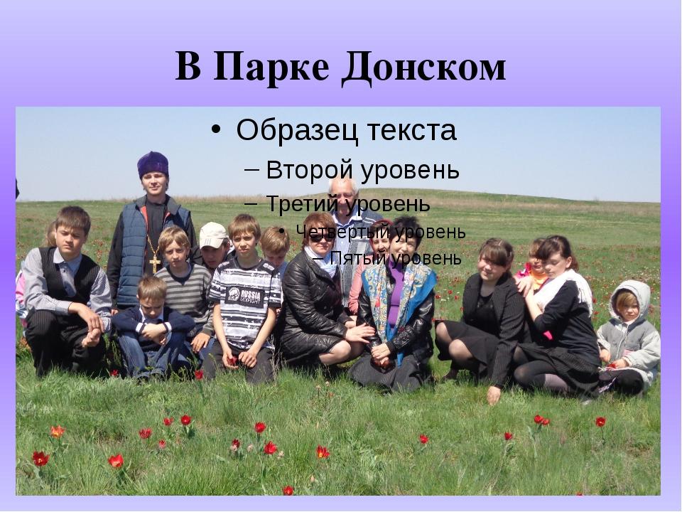 В Парке Донском