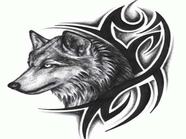 C:\Users\1\Desktop\wolf-tribal-tattoo.jpg
