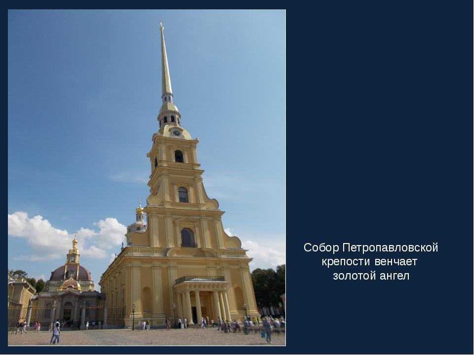 Собор Петропавловской крепости венчает золотой ангел