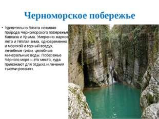 Черноморское побережье Удивительно богата неживая природа Черноморского побер