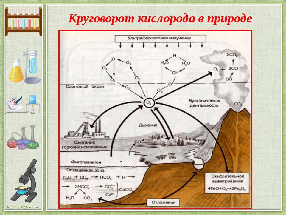 Круговорот кислорода в природе http://linda6035.ucoz.ru/