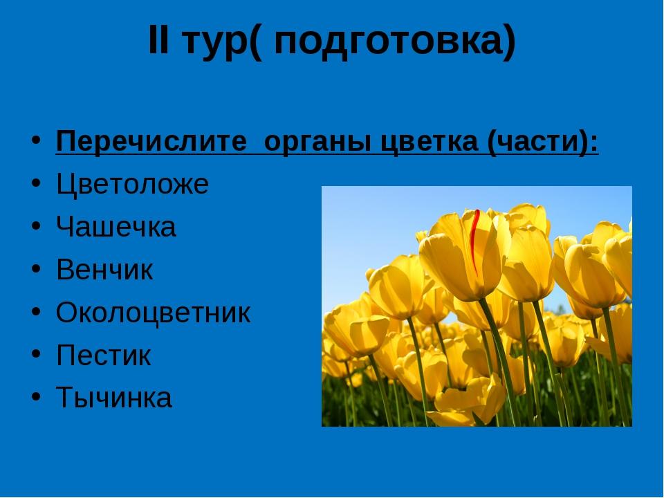 II тур( подготовка) Перечислите органы цветка (части): Цветоложе Чашечка Венч...