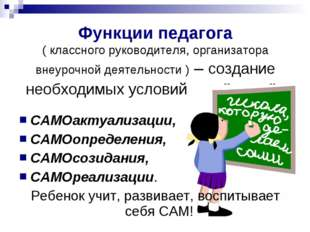 Функции педагога ( классного руководителя, организатора внеурочной деятельнос