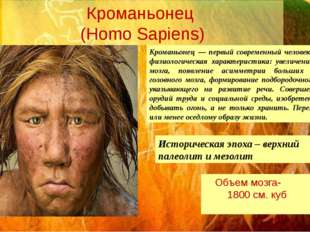 Кроманьонец (Homo Sapiens) Кроманьонец — первый современный человек. Анатомо-