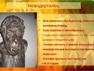 Неандерталец Шея короткая и как будто под тяжестью головы наклонена вперёд; Р