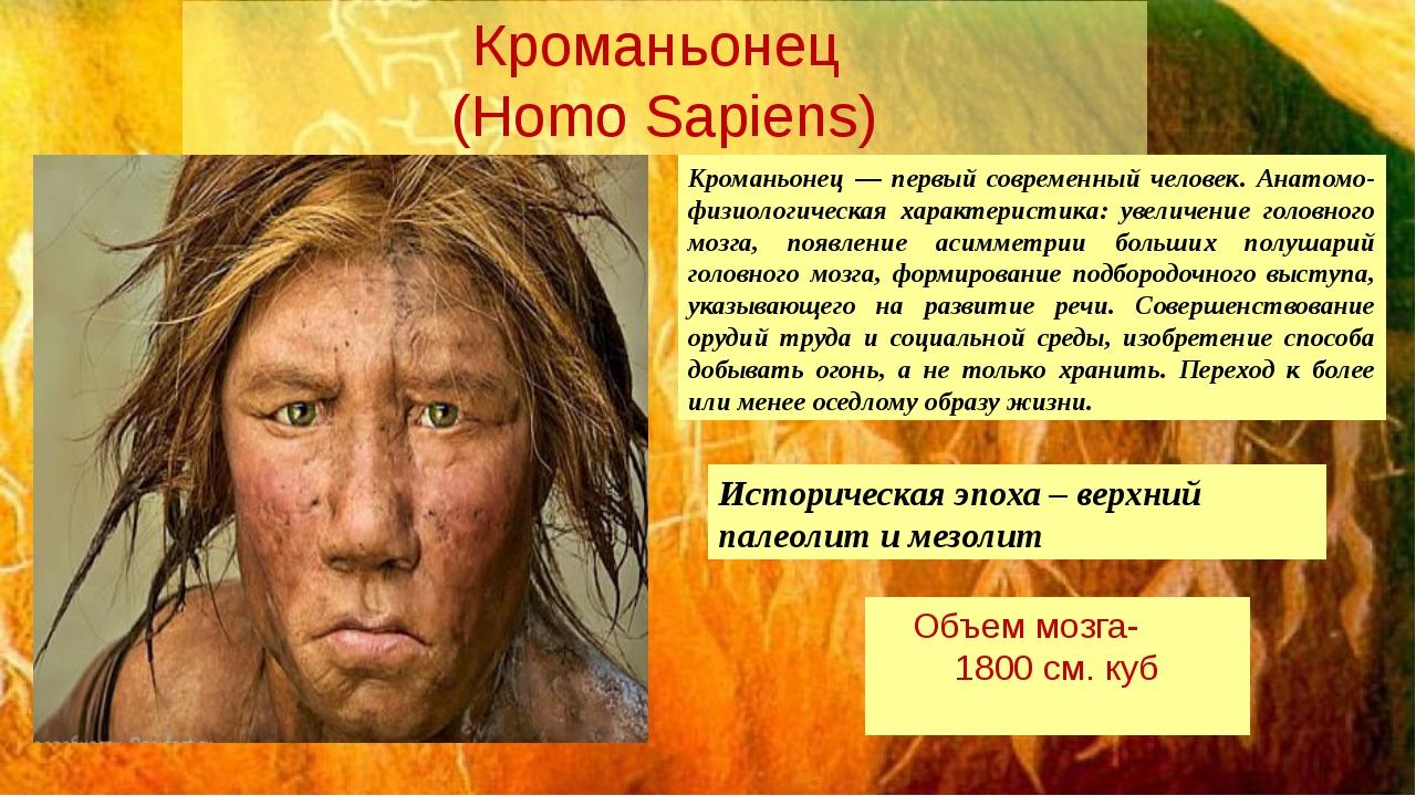 Кроманьонец (Homo Sapiens) Кроманьонец — первый современный человек. Анатомо-...
